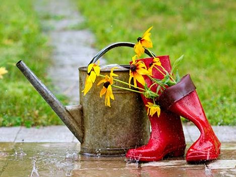 Wellies in the rain - the opposite to Dry January