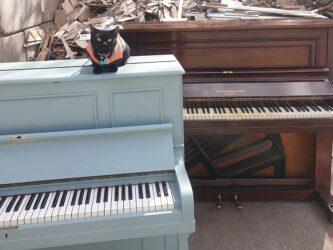 Jwitt reveal new scheme to donate old pianos