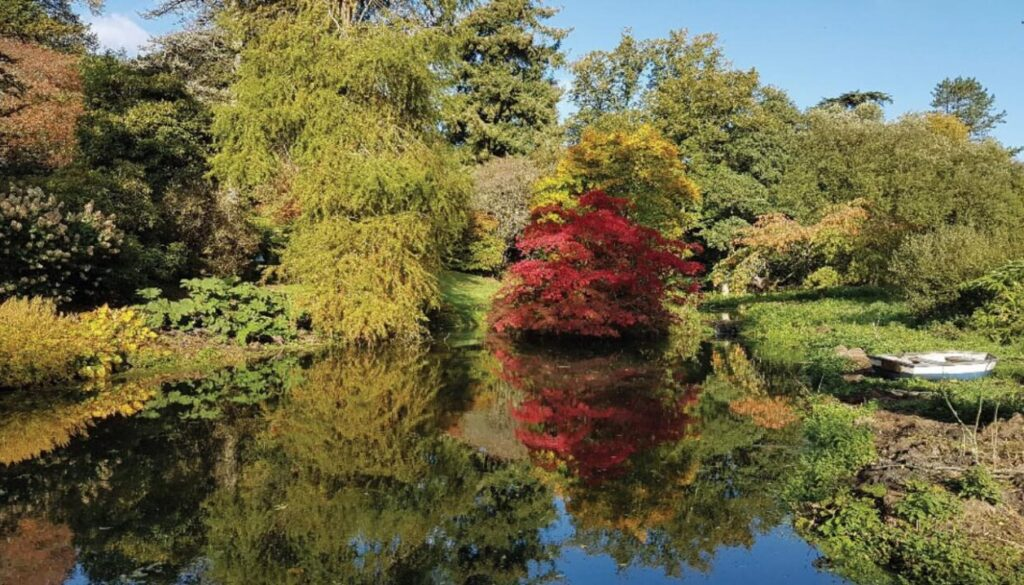 Visit The Minterne Himalayan Gardens for the autumnal scenery
