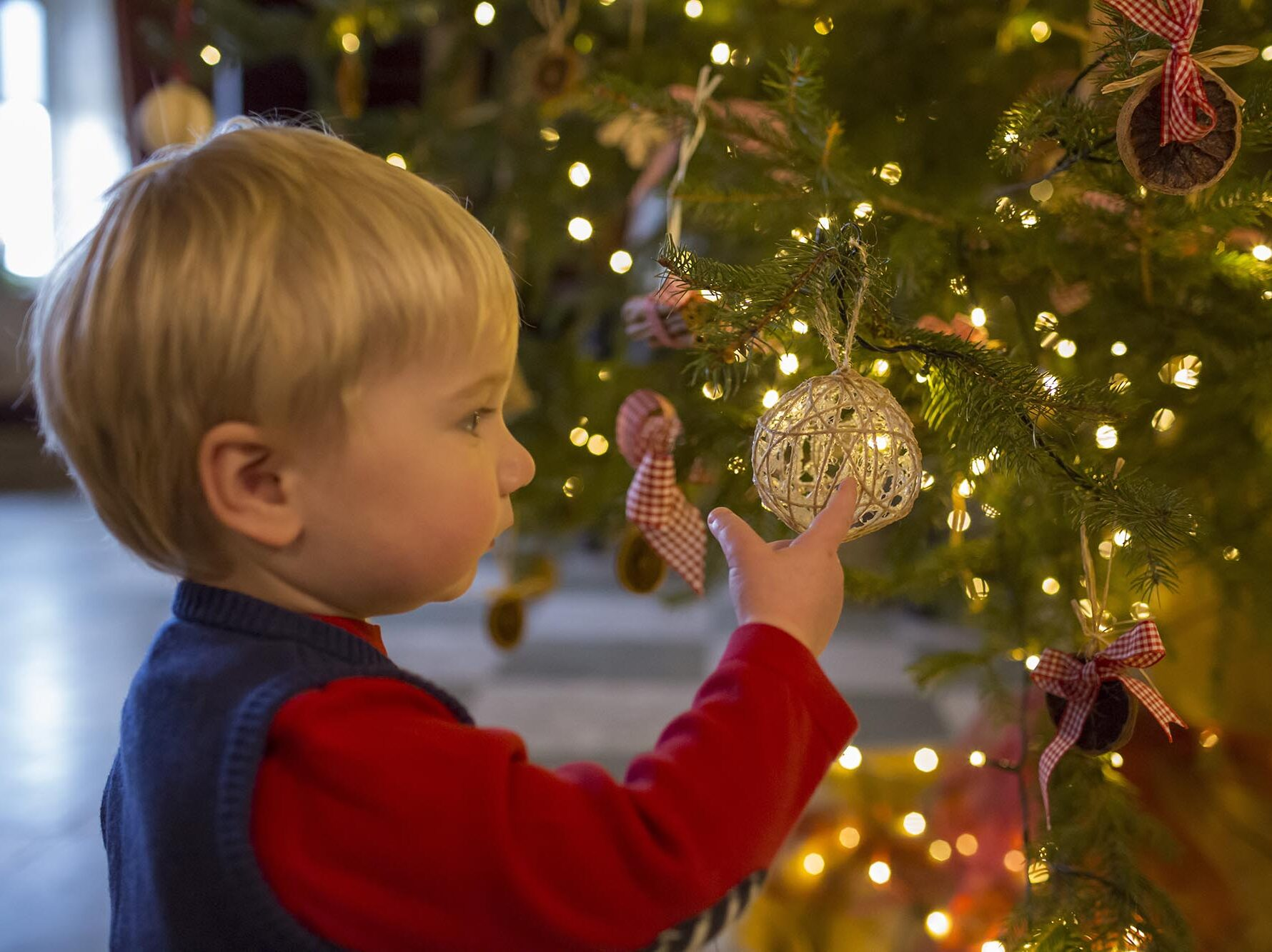 Boy looking at the decorations on a Christmas tree at Stourhead, Wiltshire