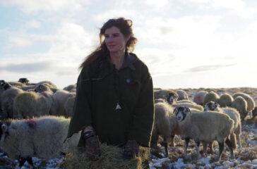 The Yorkshire Shepherdess 3